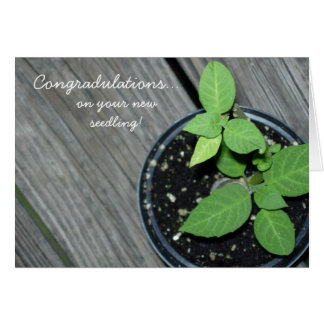 Congradulations! Card