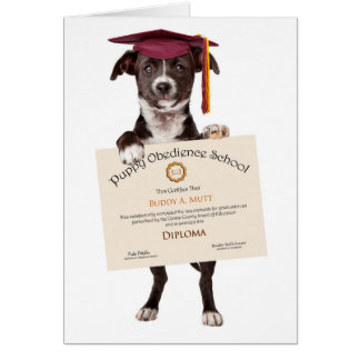 Congrats on Fetching Your Diploma Greeting Card