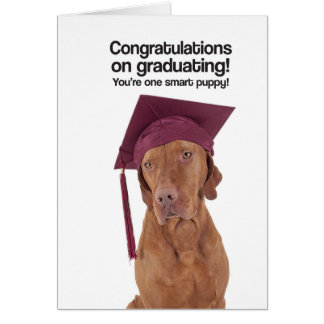 Congrats on Graduating (Vizsla) - Greeting Card
