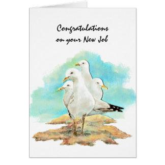 Congratulation New Job From Gang Seagulls, birds Card