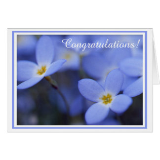 Congratulations - Bluettes Greeting Card