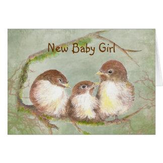 Congratulations New Baby Girl Cute Bird Family Greeting Card