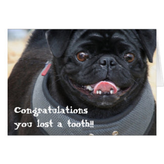 Congratulations on losing a tooth pug card
