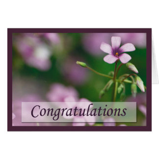 Congratulations - Pink Wood Sorrel Greeting Card
