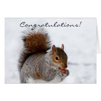 Congratulations Squirrel Greeting card