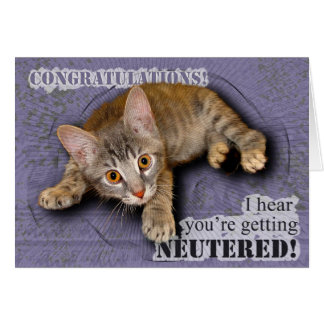 Congratulations! You're being neutered! Card
