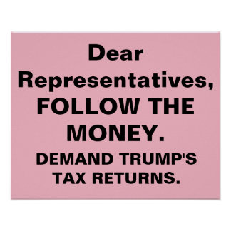 Congress Follow Money Trump Tax Returns Protest Poster
