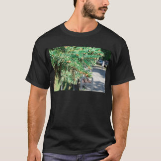 Conifer branch at the city street T-Shirt