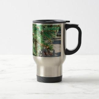 Conifer branch at the city street travel mug