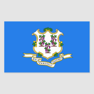 Connecticut Flag Sticker