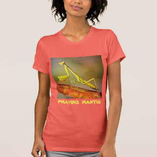 Connecticut Praying Mantis T-Shirt