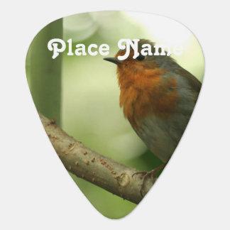 Connecticut Robin Guitar Pick