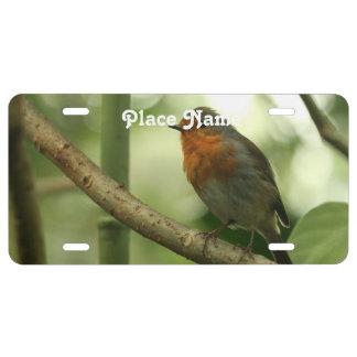 Connecticut Robin License Plate