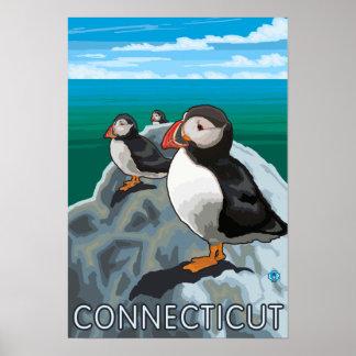 ConnecticutPuffins Scene Poster