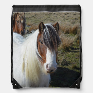 Connemara Pony Drawstring Bag