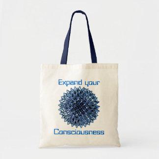 Consciousness kids keds shoe canvas bags