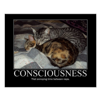 Consciousness..That Annoying Time Cat Artwork Poster