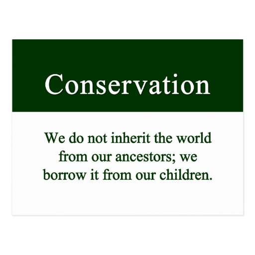 Conservation is an important responsibility postcard
