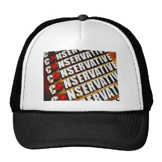 Conservative Mesh Hat