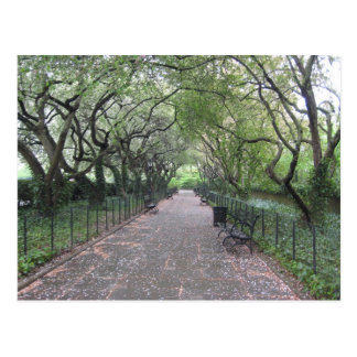 Conservatory Garden (Central Park, New York City) Postcard