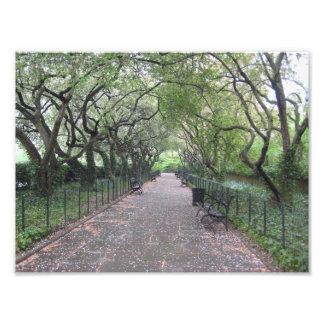 Conservatory Garden Central Park NYC Photography Photo Print