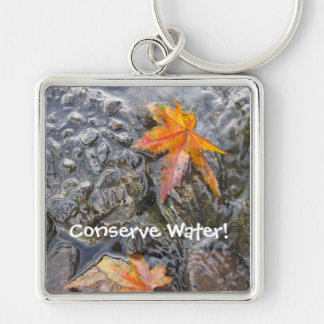 Conserve Water! Keychain