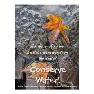 Conserve Water! Poster