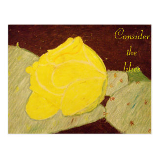 Consider the lilies Scripture Art 2Corinthians 4:5 Postcard