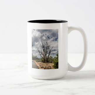 Consider the Ravens Mug
