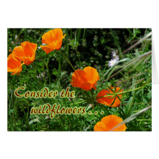 Consider the Wildflowers Encouragement Card
