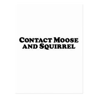 Contact Moose and Squirrel - Mixed Clothes Postcard