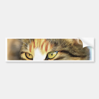Contented Cat Bumper Sticker