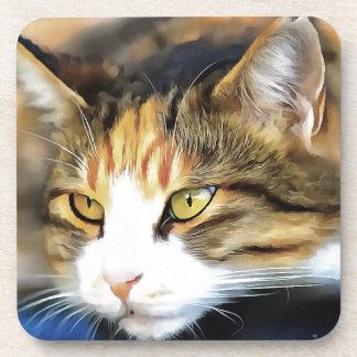 Contented Cat Coaster