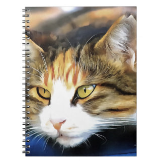 Contented Cat Notebook