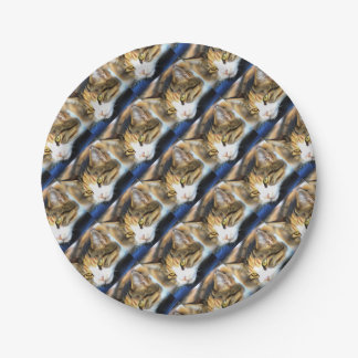 Contented Cat Paper Plate