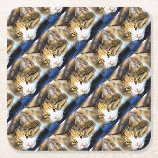 Contented Cat Square Paper Coaster