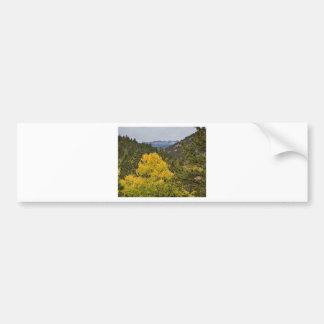 Continental Divide Autumn View Bumper Sticker