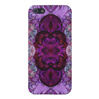 Convoluted Pilaster Var 1 Savvy iPhone 5 5S Case