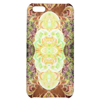 Convoluted Pilaster Var 2 Savvy iPhone 5C Case