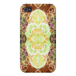 Convoluted Pilaster Variation 2  Savvy iPhone 4 Cases For iPhone 4