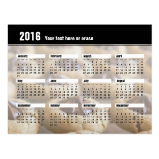 Cookie Calendar Postcard 2016