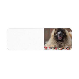 cookie nose Leonberger Return Address Label