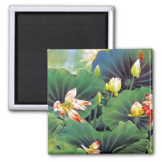 Cool beautiful chinese lotus flower green leaf art square magnet