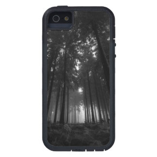 Cool Black and White Forest Fog Silence Gifts iPhone 5 Case