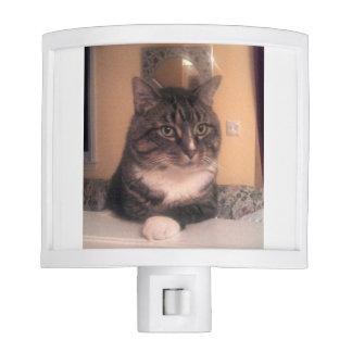 Cool Cat night light