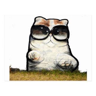 Cool Cat Postcard
