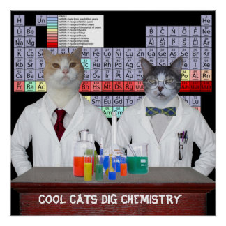 Cool Cats Dig Chemistry Poster