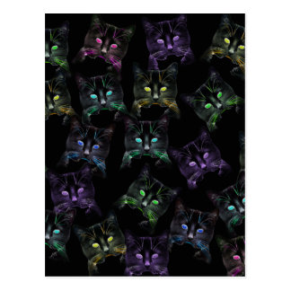 Cool Cats on Black! Multi-colored Cats Postcard