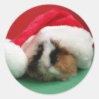 Cool Christmas Guinea Pig Stickers