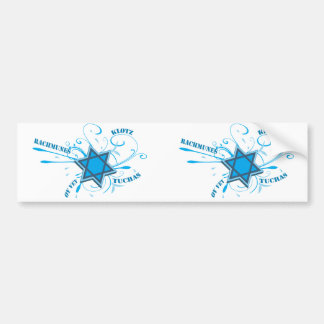 Cool David Star & Yiddish Words bumper sticker